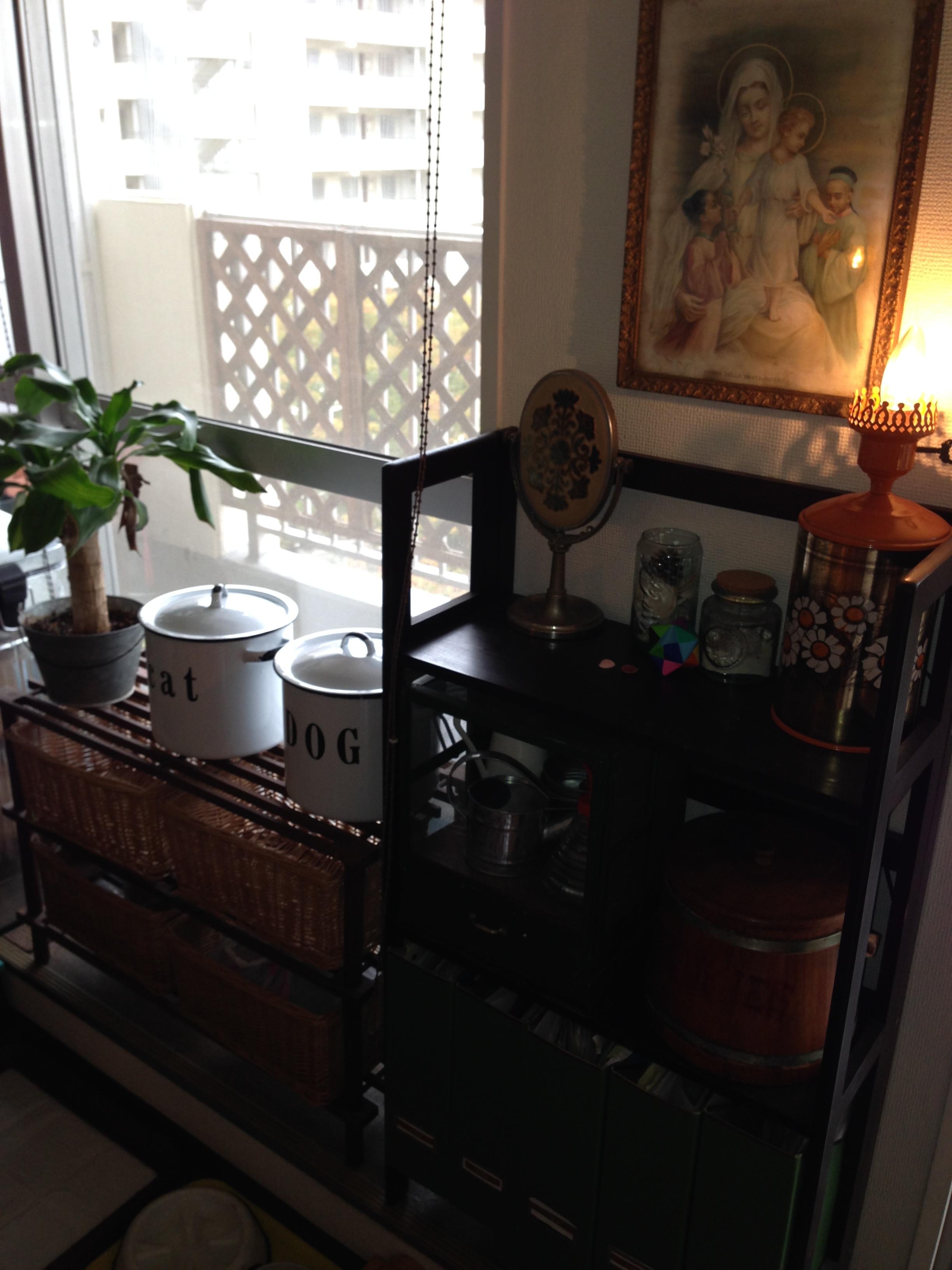 窓際家具たち
