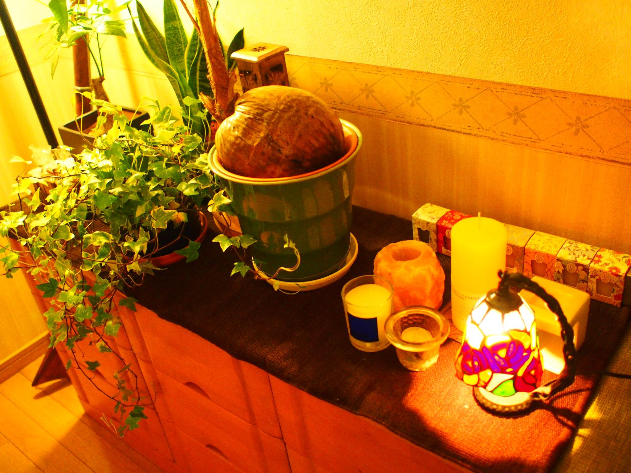 植物&キャンドル